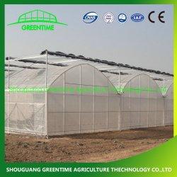 Дешевые Multi-Span/Span коммерческих туннеля пластиковой пленкой стекло из поликарбоната сельскохозяйственной фермы выбросов парниковых газов в семенное ложе для гидропоники томатный клубничный