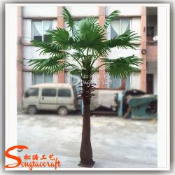 Des plantes de jardin pour la vente artificielle de l'arbre du ventilateur de feuilles de palmiers en pot