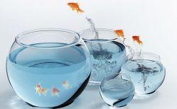 Acuario de peces artificiales mr124