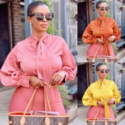 2020 Summer Kleren van het Bureau van de Dames van het Overhemd van de Koker van de manier de Lange Elegante