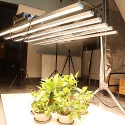 Il bianco caldo all'ingrosso LED di 840W 3500K coltiva Stpectrum pieno chiaro Samsung Lm301b LED per la serra
