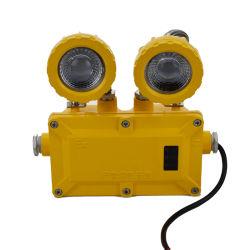 耐圧防爆水証拠の塵の証拠LEDの洪水ライト