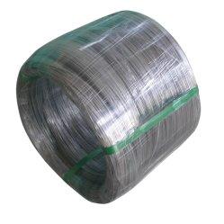 冷たい-明るいSurface&Annealedの引かれた301 304 316Lステンレス鋼ワイヤー