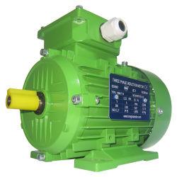 Cer zugelassenes Elektromotor Dreiphasen-Wechselstrom-Induktions-Bewegungsaluminiumgehäuse