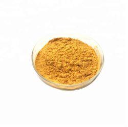マンゴのエキスのMangiferinの有機性乾燥したマンゴのフルーツジュースの粉