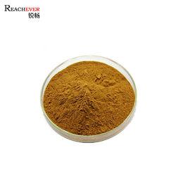 Zuiver Polysaccharide 40% van Lentinan van het Uittreksel van de Paddestoel van Shiitake van het Poeder van de Paddestoel het Poeder van de Paddestoel