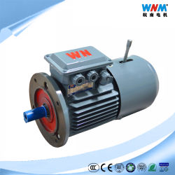 Yej2 WS Electric Electromagnetic Brake Motor IP55 F 0.18~220kw Iec-High Efficiency Squirrel Cage Rotor Speed Control Three Phase für Conveyors Yej280m1-2 0.75kw