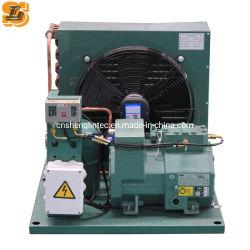 Unità condensatrici aperte a bassa temperatura per conservazione a freddo