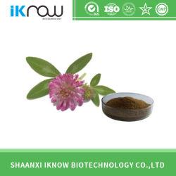 Les suppléments de matières premières extrait de trèfle rouge pour l'alimentation/PHARM/cosmétiques 10%-60% isoflavones
