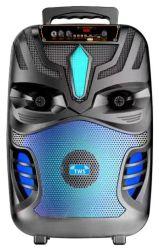 유선 마이크 및 Bluetooth 8 포함 무선 액티브 사운드 박스 인치 PA 스피커