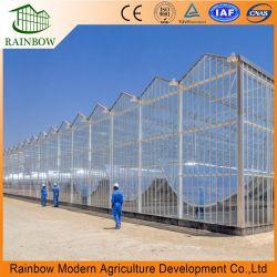 Venlo doble hueco de vidrio templado con efecto invernadero Hidroponía sistemas de cultivo de hortalizas, flores//// jardín de tomate de la Comunidad/ Eco Restautant / Agricultura