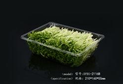Vassoio di servizio biodegradabile supermercato frutta verdura conservazione con coperchio divisori Vassoi della confezione