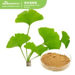 24 % flavone, 6 % des lactones / extrait de Ginkgo Biloba prix d'usine