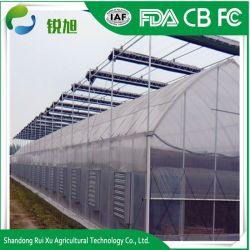 Alta serra agricola efficiente di energia solare del film di materia plastica per la piantatura delle verdure