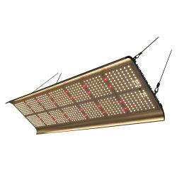 Crecimiento de la planta de invernadero LED de luz de faro de luz de relleno de verduras de la Junta de suculentos la siembra de la luz de relleno de la luz de espectro completo