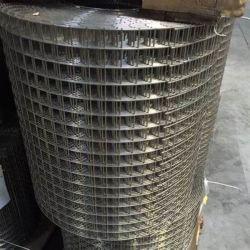 304 316 3/4 pouce Treillis soudés en acier inoxydable/treillis soudés en acier inoxydable/ Ss Wire Mesh