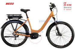 도시 쉬운 라이더 전기 자전거 E 자전거 스쿠터 기관자전차 중앙 몬 모터 500W 8fun 100km