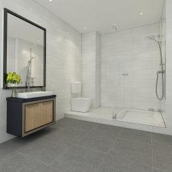 24X24 Douche canadien de la Porcelaine Rustique Salle de bains moderne, carrelage de sol