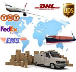 EMS UPS 서비스, 특급 항공 화물, 물류업체 및 중국에서 스위스까지 배송 서비스