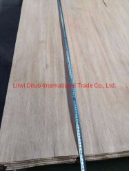 Impiallacciatura di legno della betulla/Bintangor/Okoume/Pine per 1270X2500X0.1-0.6mm