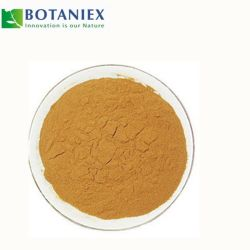 Anti-Cancer extracto de té verde L-Theanine de suplemento alimenticio