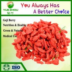 La Chine de Goji séchées organiques Goji Berry 220 240pcs par 50g avec des prix bon marché