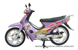Ktm klassisches Motorrad des Entwurfs-110cc Cub (TM110-2)