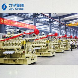 Motore a combustione interna a gas a bassa emissione Liyu 1MW/1000kw 10,5 kv Cina Produttore del set di generatori di biogas per energia rinnovabile