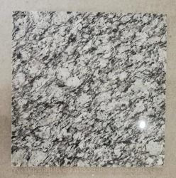 Гранитные Pavers в саду Белого моря/кривой/Spray G418 асфальтирование плитки слоев REST/Ландшафт/камня