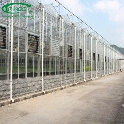 Hydroponics Comercial Holandesa de Venlo con efecto invernadero de vidrio tipo de sistema de climatización
