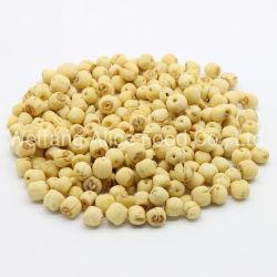 Padrão de exportação crocante de fornecedor de produtos hortícolas frutas saudáveis snacks Fried Vf as sementes de lótus