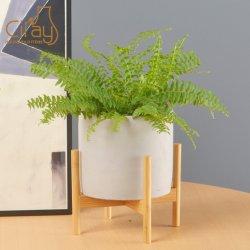 Moderne Gartendekoration Zement Sukkulenten Topf mit Holzständer