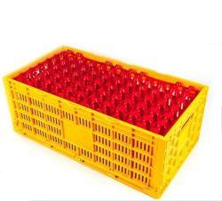 صنع وفقا لطلب الزّبون دجاجة بيضة صينيّة لأنّ تخزين تعليب وينقل