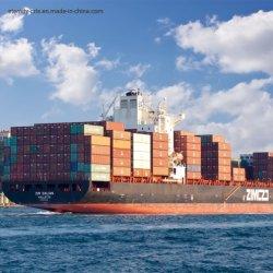الشحن البحري بالشحن البحري مع المناولة الاحترافية من الصين إلى نهافا شيفا/موندرا/نيودلهي/مومباي/شيناي