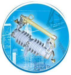 RW11-12/3~100 de Zekering van de isolator, 10 ~24kv, de Link van /Fuse van het Knipsel van de Zekering/Zekering van het Type van Opgeven van de Schakelaar van de Onderbreking de Openlucht