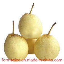 Fruto en forma de pera la pera la pera blanco de China de Hebei Ya pera