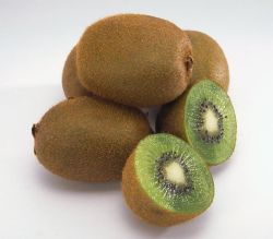 La nouvelle récolte de fruits frais de haute qualité Kiwi (80-150g)