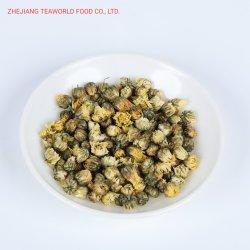 Tè di erbe del crisantemo caldo di vendita