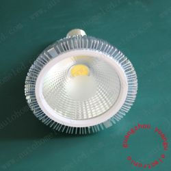 COB E27 18W PAR38 LED Light