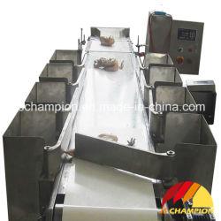 Et le classement de pesage automatique machine pour l'abattoir de volaille