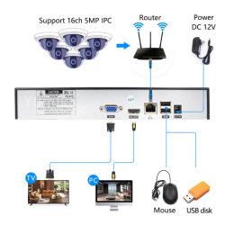 H. 265 16CH CCTV 5.0MP rede NVR Gravador Vidoe Análise Inteligente 1080P Câmara IP com cabo SATA DVR ONVIF