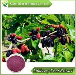 Het Uittreksel van het Concentraat van het Fruit van de moerbeiboom voor het Supplement van het Voedsel