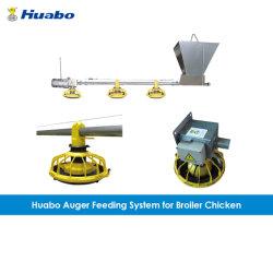 Vis de vidange de l'équipement d'alimentation et le système pour la Volaille Les poulets à griller Farm