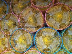 Trappole Calamario /Sleeve-Fish/Squid /Octopus per attrezzi da pesca