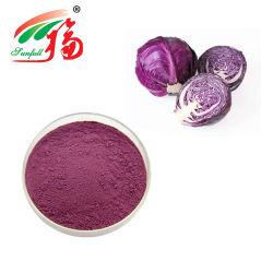 L'Eau Anti Oxident solubles dans les additifs alimentaires organiques extrait de chou en poudre