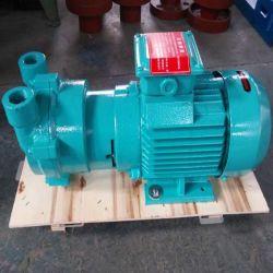 2BV de vloeibare Vacuümpomp van de Ring met de Pomp van de VacuümFiltratie van de Compressor