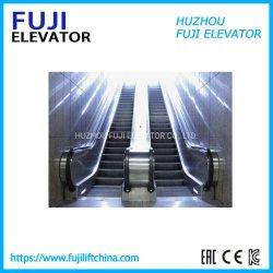 BinnenRoltrap van de Prijs van de Controle van Vvvf van de Fabriek van FUJI China de Economische voor de Commerciële Bouw met AutoBegin