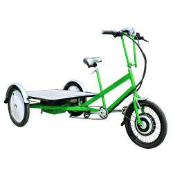 3つの車輪の貨物交通機関に使用する電気平面Trikeのバイク