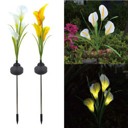 شمسيّة زهرة أضواء - خارجيّة مسيكة [لد] زهرات لأنّ حديقة أضواء