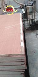 El envío de piezas de repuesto de la carga Hoiste - Estructura de acero, acero, almacén, fábrica de Pisos de madera contrachapada